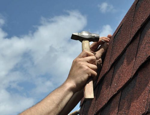 Roof Repair vs. Replacement: 5 Essential Points to Think About