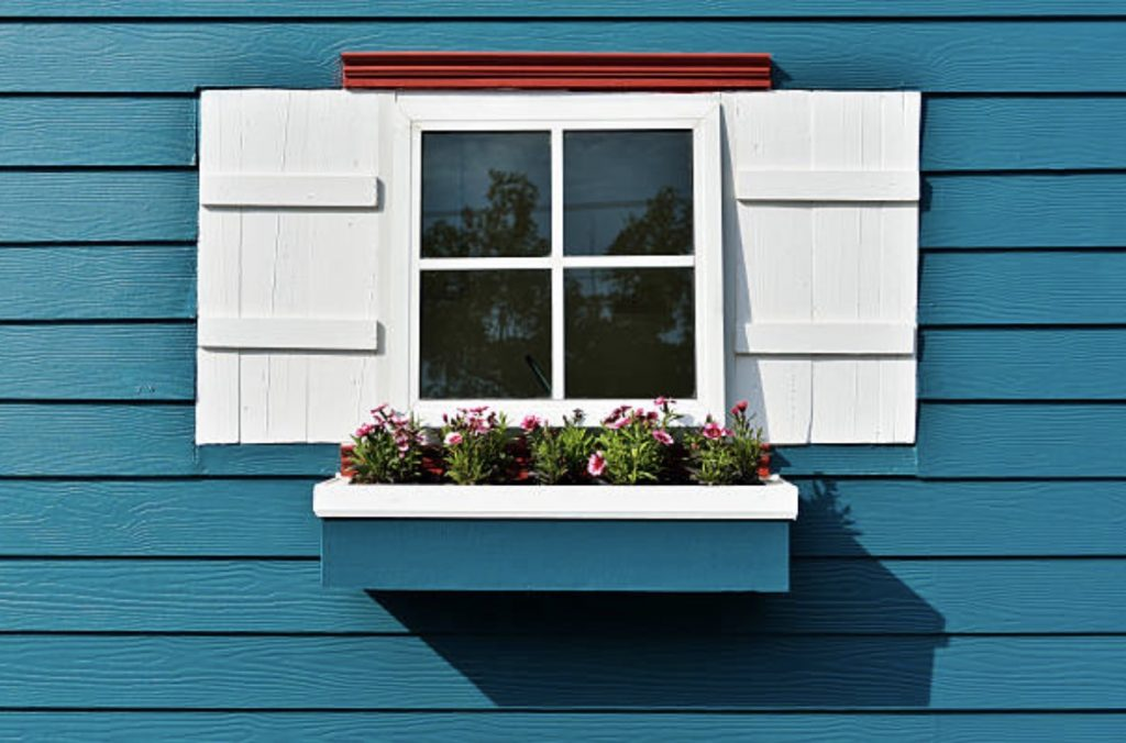 window with flower plant facade