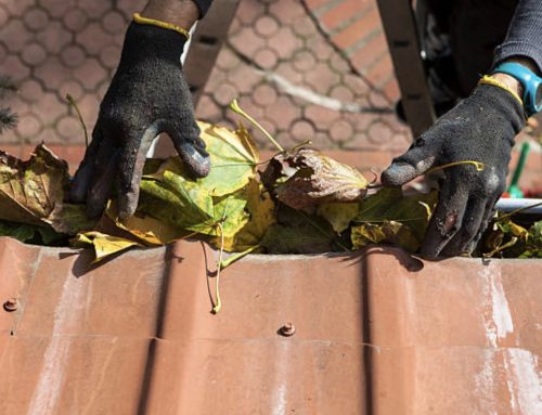How to Clean Gutters and Why It Matters