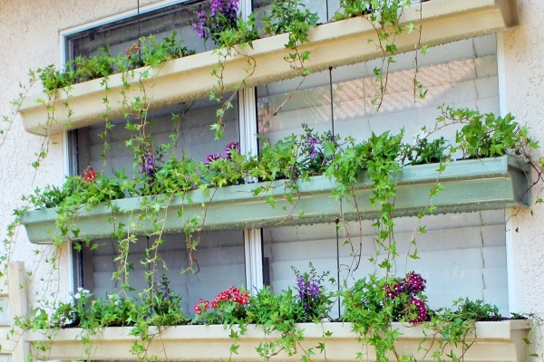 one of the rain gutter ideas is use it as a pot of small plants