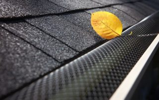 yellow leaf on screen gutter guards