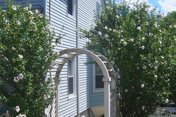 a gate-style trellis with a hidden downspout