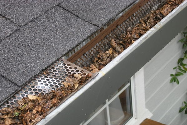 a mesh type gutter protector effectively doing its work