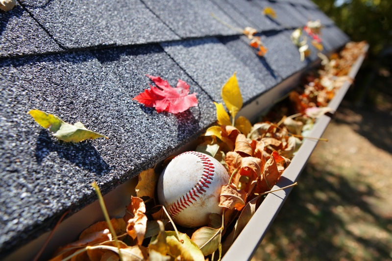 autumn leaves and ball in gutters