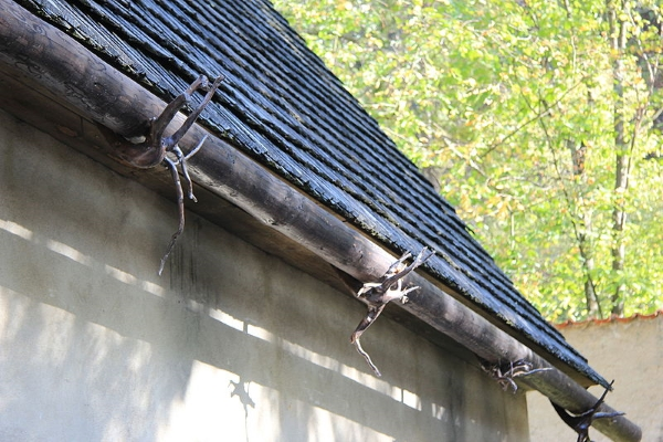 Do You Really Need Rain Gutters: The Importance Of It