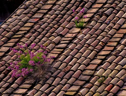 Roof Replacement – How Often: The Accurate Number of Years To Change Your Roof